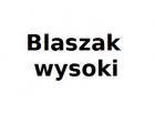 BLASZAK-WYSOKI 1885x781