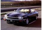 II 1988-1996